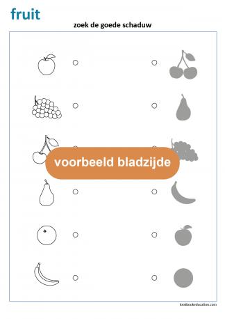 Werkblad_schaduw_fruit