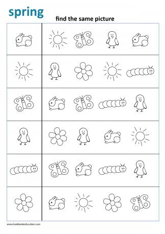 Worksheet Find the Same Spring