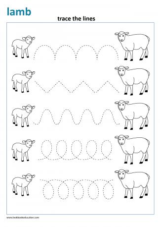 Worksheet Writing Pattern Lamb